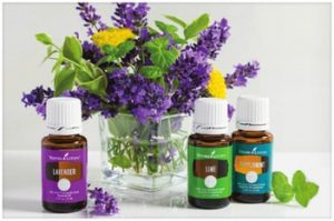 Essential Oils 101 @ Salt of the Earth, Center for Healing